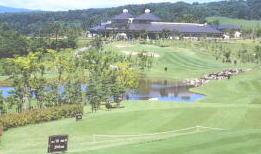 ゴルフ レイク クラブ ウッド
